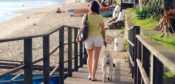 Reistips voor je hond!